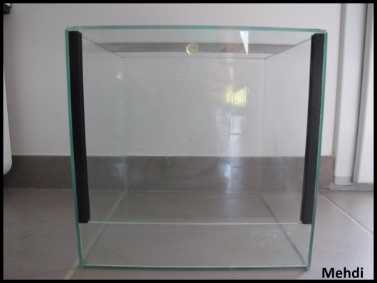 Terrarium en verre artisanal, confiné
